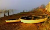 nature-49-Masset_Harbour_dawn_5_r